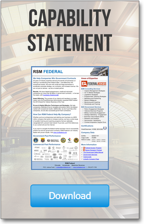 RSM Federal Capability Statement